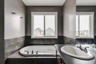 Photo 29: 1571 COPPERFIELD Boulevard SE in Calgary: Copperfield Detached for sale : MLS®# A1107569