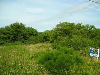 Photo 3: 0 SANDY POINT Road in Shelburne: 407-Shelburne County Vacant Land for sale (South Shore)  : MLS®# 4439593