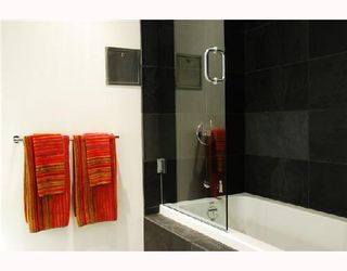 """Photo 8: 206 53 W HASTINGS Street in Vancouver: Downtown VW Condo for sale in """"PARIS ANNEX"""" (Vancouver West)  : MLS®# V740913"""