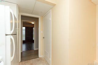 Photo 28: 1813 Rossiter Pl in VICTORIA: SE Lambrick Park House for sale (Saanich East)  : MLS®# 830624
