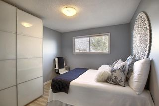 Photo 21: 412 33 Avenue NE in Calgary: Winston Heights/Mountview Semi Detached for sale : MLS®# A1068062