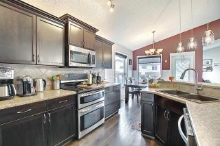 Photo 17: 9519 208 Street in Edmonton: Zone 58 House for sale : MLS®# E4241415