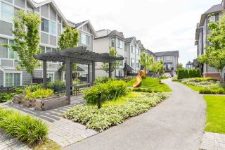 """Photo 19: 55 8217 204B Street in Langley: Willoughby Heights Townhouse for sale in """"EVERLY GREEN"""" : MLS®# R2437299"""