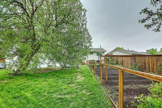 Photo 34: 39 Fonda Green SE in Calgary: Forest Heights Detached for sale : MLS®# A1118511