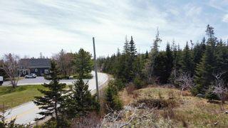 Photo 4: Lot Port Latour Road in Upper Port La Tour: 407-Shelburne County Vacant Land for sale (South Shore)  : MLS®# 202111745