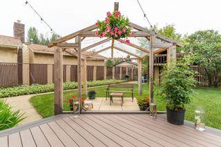 Photo 42: 5151 37 Avenue in Edmonton: Zone 29 House for sale : MLS®# E4255558