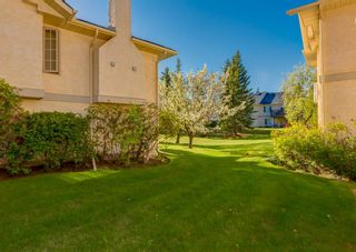 Photo 42: 119 Edgepark Villas NW in Calgary: Edgemont Row/Townhouse for sale : MLS®# A1114836