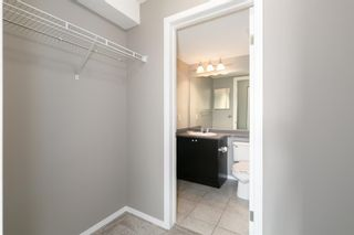 Photo 13: 8329 304 MACKENZIE Way SW: Airdrie Apartment for sale : MLS®# A1128736