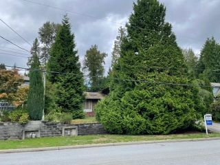 """Photo 8: 551 CHAPMAN Avenue in Coquitlam: Coquitlam West House for sale in """"Coquitlam West"""" : MLS®# R2617851"""