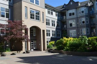 """Photo 1: 213 20200 56 Avenue in Langley: Langley City Condo for sale in """"THE BENTLEY"""" : MLS®# R2068739"""