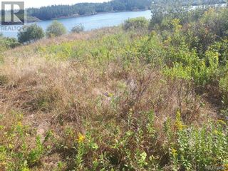 Photo 7: 637 Wellington Road in Blacks Harbour: Vacant Land for sale : MLS®# NB060608