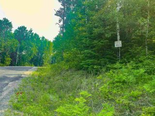 Photo 7: Lot 2 Fire Rd #2 McKenzie Portage RD in KENORA: Vacant Land for sale : MLS®# TB212223