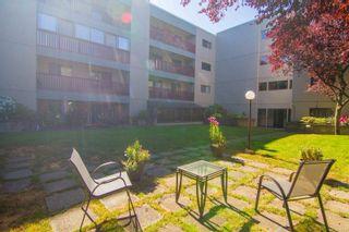 Photo 17: 105 3255 Glasgow Ave in Saanich: SE Quadra Condo for sale (Saanich East)  : MLS®# 888117