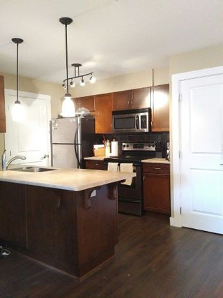 """Photo 5: 312 2038 SANDALWOOD Crescent in Abbotsford: Central Abbotsford Condo for sale in """"The Element"""" : MLS®# R2222178"""