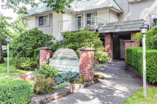 """Photo 2: 303 22275 123 Avenue in Maple Ridge: West Central Condo for sale in """"Mountain View Terrace"""" : MLS®# R2389765"""