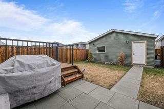 Photo 29: 38 Redstone Common NE in Calgary: Redstone Detached for sale : MLS®# A1100551