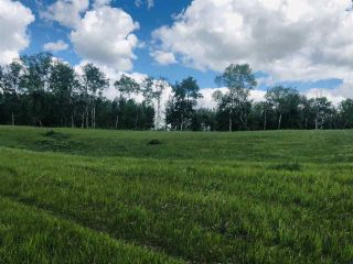 Photo 10: 51315 RR262 Road: Rural Parkland County Rural Land/Vacant Lot for sale : MLS®# E4256896
