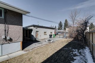 Photo 23: 4324 73 Street NW in Calgary: Bowness Detached for sale : MLS®# A1090341