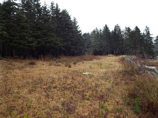 Photo 2: 331 Highway in Voglers Cove: 405-Lunenburg County Vacant Land for sale (South Shore)  : MLS®# 201601512