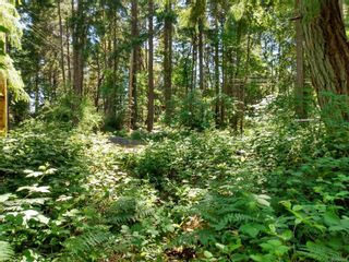 Photo 4: 20 Pirate Pl in : Isl Protection Island Land for sale (Islands)  : MLS®# 878593