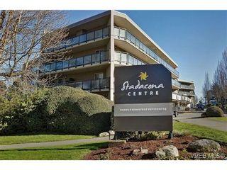 Photo 20: 307 1419 Stadacona Ave in VICTORIA: Vi Fernwood Condo for sale (Victoria)  : MLS®# 694240