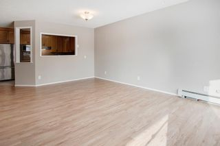 Photo 10: 3103 Hawksbrow Point NW in Calgary: Hawkwood Apartment for sale : MLS®# A1067894