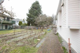 Photo 19: 19073 DOERKSEN Drive in Pitt Meadows: Central Meadows House for sale : MLS®# R2572326