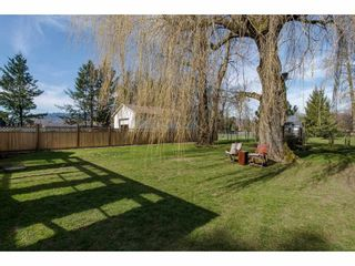 Photo 19: 41751 YARROW CENTRAL Road: Yarrow House for sale : MLS®# R2246799