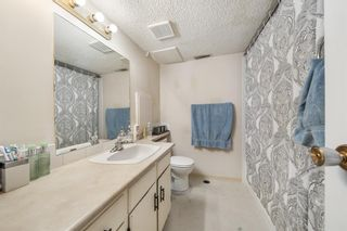 Photo 20: 4904 Nesbitt Road NW in Calgary: North Haven Semi Detached for sale : MLS®# A1065106