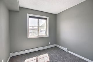 Photo 18: 4305 1317 27 Street SE in Calgary: Albert Park/Radisson Heights Apartment for sale : MLS®# A1107979