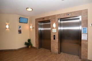Photo 38: 407 10121 80 Avenue in Edmonton: Zone 17 Condo for sale : MLS®# E4240239