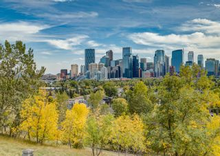 Photo 17: 1415 5 Street NW in Calgary: Rosedale Detached for sale : MLS®# A1147874