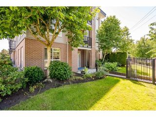 """Photo 31: 118 5430 201ST Street in Langley: Langley City Condo for sale in """"THE SONNET"""" : MLS®# R2586226"""