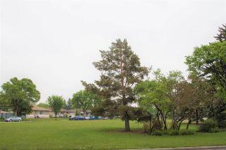 Photo 16: 12232 Dovercourt Crescent NW in Edmonton: Zone 04 House for sale : MLS®# E4235853