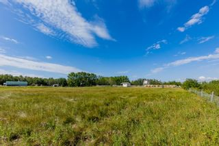 Photo 44: 53153 RGE RD 213: Rural Strathcona County House for sale : MLS®# E4260654