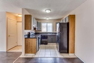 Main Photo: 16 Falconridge Place NE in Calgary: Falconridge Semi Detached for sale : MLS®# A1155752