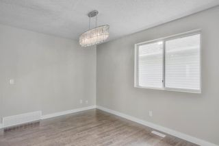 Photo 6: 17 MARTINDALE Boulevard NE in Calgary: Martindale House for sale : MLS®# C4121854