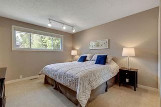 Photo 21: 463 Dalmeny Hill NW in Calgary: Dalhousie Detached for sale : MLS®# A1120566