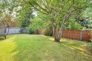 Photo 15: 172 Edendale Way NW in Calgary: Edgemont Detached for sale : MLS®# A1133694