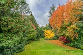 Photo 25: 3369 THE CRESCENT in Vancouver: Shaughnessy House for sale (Vancouver West)  : MLS®# R2534743