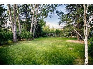 Photo 16: 44 BOW VILLAGE Crescent NW in Calgary: Bowness Detached for sale : MLS®# A1053654