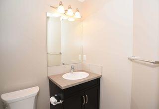 Photo 28: 4110 ALLAN Crescent in Edmonton: Zone 56 House for sale : MLS®# E4249253
