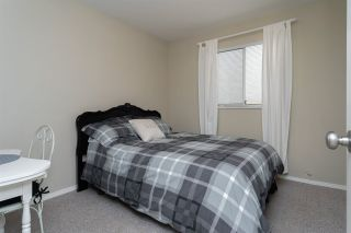 Photo 48: 14766 GOGGS Avenue: White Rock House for sale (South Surrey White Rock)  : MLS®# R2485772