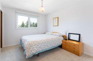 Photo 19: 6108 40 Avenue in Edmonton: Zone 29 House for sale : MLS®# E4243028