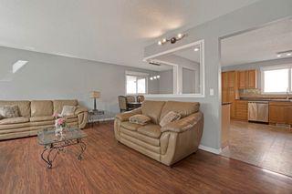 Photo 10: 51 ALPINE Boulevard: St. Albert House for sale : MLS®# E4247886