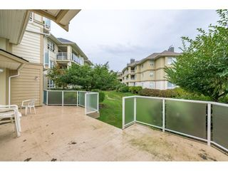 """Photo 25: 109 20125 55A Avenue in Langley: Langley City Condo for sale in """"BLACKBERRY LANE 11"""" : MLS®# R2617940"""