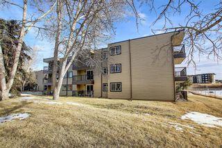 Photo 32: 305 40 Glenbrook Crescent: Cochrane Apartment for sale : MLS®# A1052145
