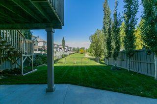 Photo 26: 20032 46 Avenue NW in Edmonton: Zone 58 House for sale : MLS®# E4262791