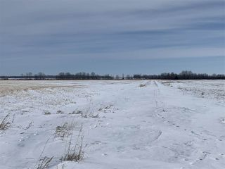 Photo 16: RR 25 HWY 661: Rural Westlock County Rural Land/Vacant Lot for sale : MLS®# E4236665