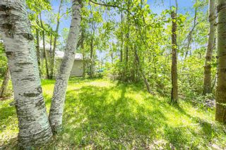 Photo 14: 84 52059 RGE RD 220: Rural Strathcona County House for sale : MLS®# E4247284